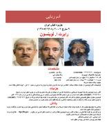 Levinson Poster - Farsi