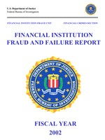 Financial Fraud Institution and Failure Report 2002