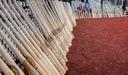 Baseball Bats Leaning on Fence