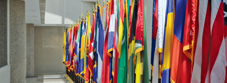 Flags in CJIS Building