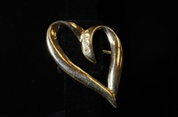 Jewelry from David Parker Ray Investigation (Photo 8)