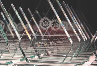Director's Community Leadership Award Trophies 2010