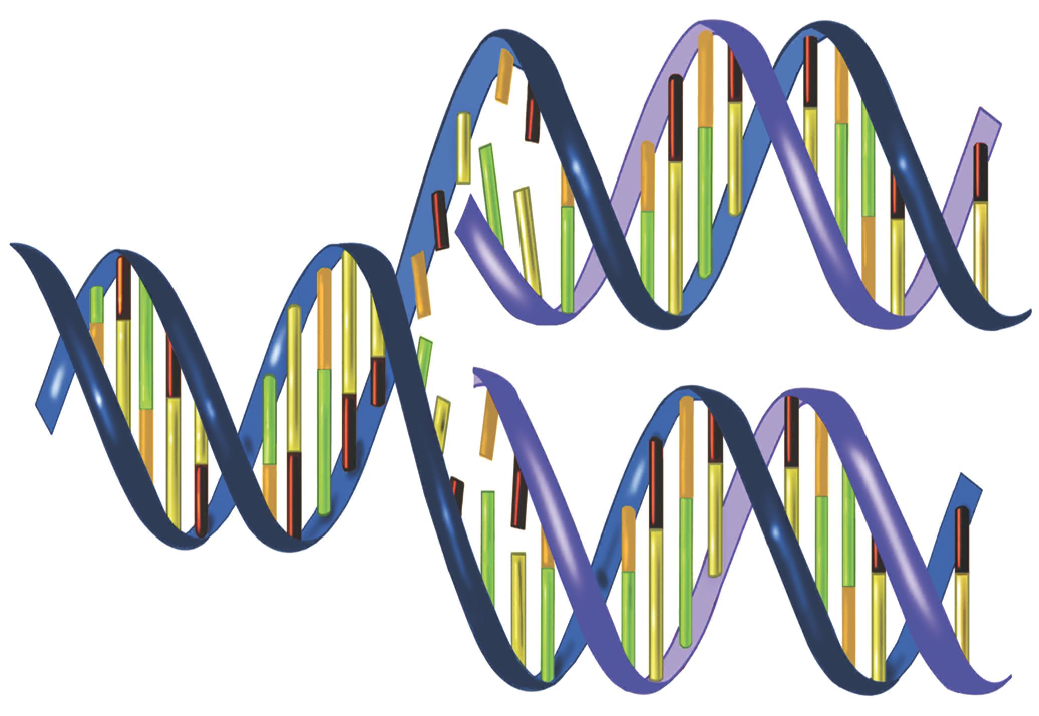 Rapid DNA — FBI