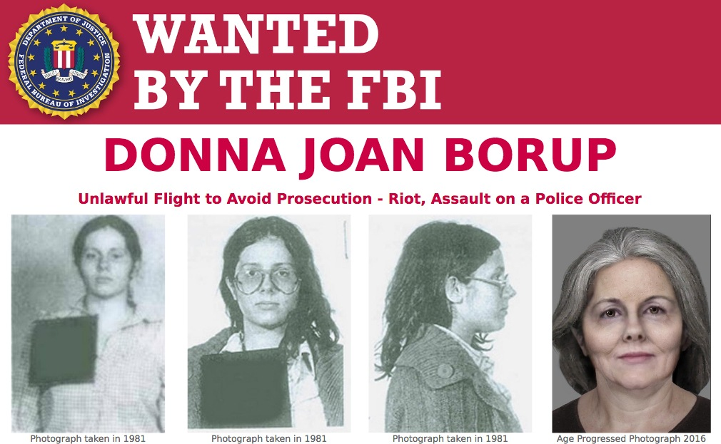 Screenshot of top portion of Wanted by the FBI poster for Donna Joan Borup