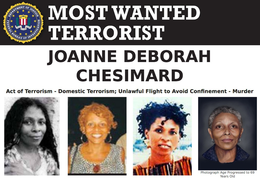 Screenshot of top portion of Most Wanted Terrorist poster for Joanne Deborah Chesimard