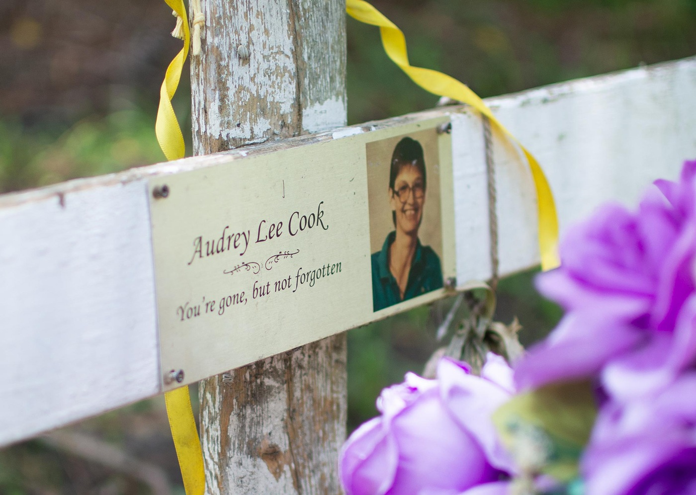 Killing Fields: Marker for Audrey Lee Cook