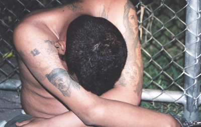 MS-13 Gang Suspect