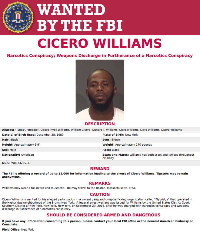 Cicero Williams