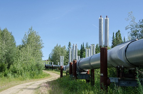 A stretch of the 800-mile Trans-Alaska Pipeline. In 2001, a resident of Livengood, Alaskaaa town of less than two dozen people about 50 miles north of Fairbanksashot a hole in the pipeline with a high-powered rifle.