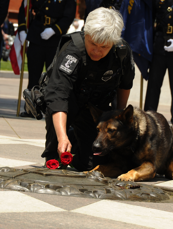Montgomery County (Maryland) Police Sgt. Mary David and her dog, Sonic, lay a rose in honor of fallen canines during the first annual Police K-9 Memorial Service at the National Law Enforcement Memorial Friday, May 11, 2018 in Washington, D.C.
