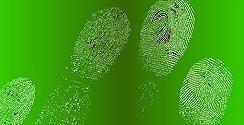 Scanned Fingerprints