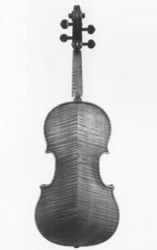 Stradivarius Back