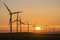 Texas Man Sentenced for Wind Farm Investment Scam