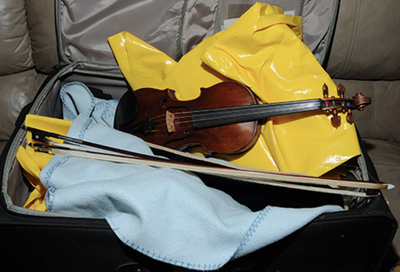 The Case of the Stolen Stradivarius