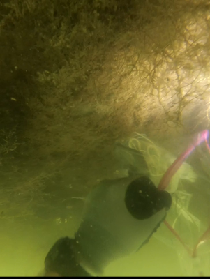 Underwater Post-Blast: Recovering Evidence in Murky Waters